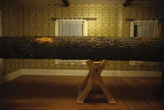 Living With A Log